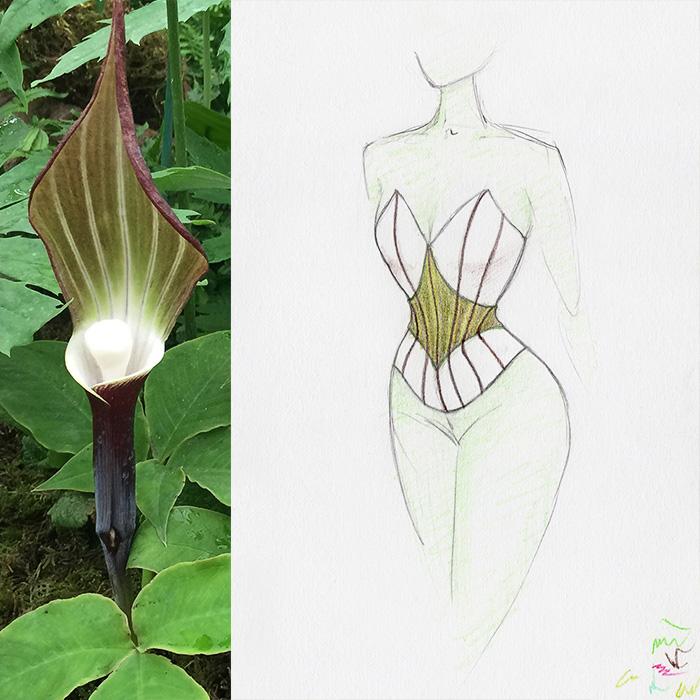 Dark Lily Corset Inspiration